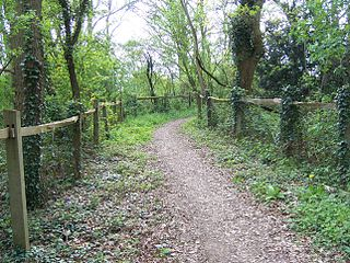 Bridle path Path that can be used by people riding horses