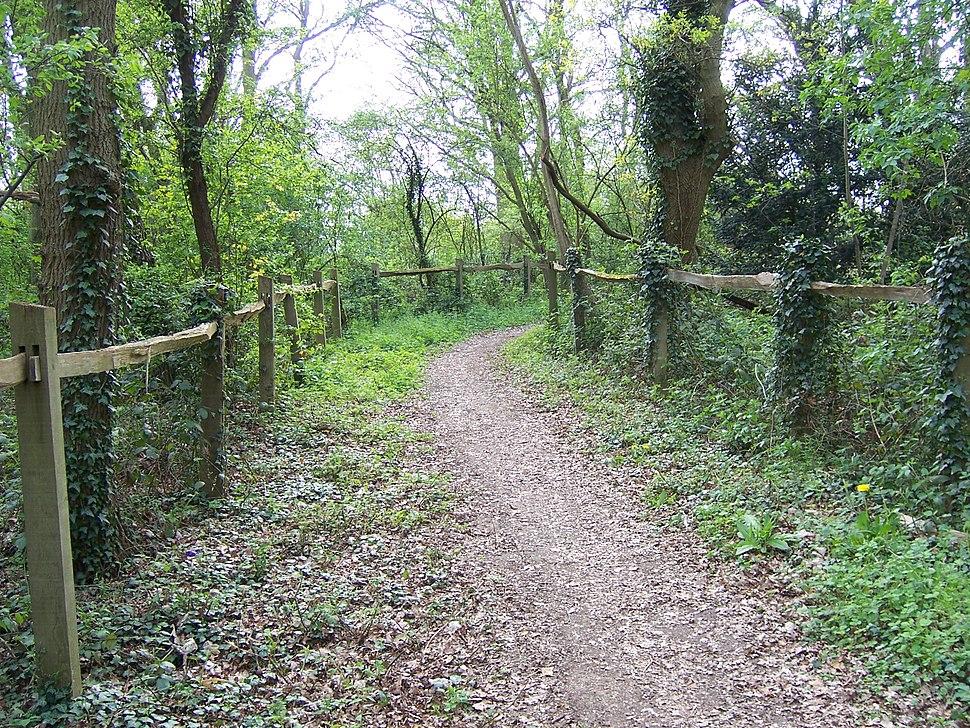 Hillingdon bridleway