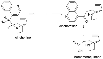 Homomeroquinene synthesis
