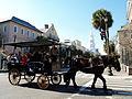 Horse-drawn carriage charleston.jpg