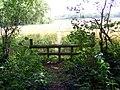 Horse jump, The Oaks - geograph.org.uk - 1437974.jpg