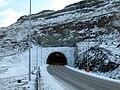 Hov.tunnel.1.jpg