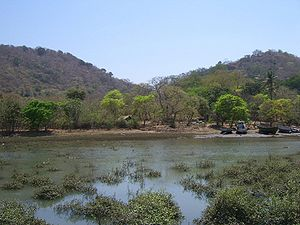 Elephanta Island - The island as seen from close to the boat landing