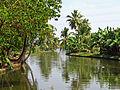 India - Kerala - 006 - quieter backwaters (2068040007).jpg