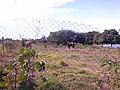 Itupeva - panoramio (905).jpg