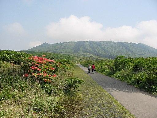 Izu-Oshima-IMG 4759