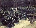 J. van Looy - Tuin met kool aan de zoom van het Velzerbos - AB3340 - Frans Hals Museum.jpg