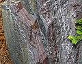 Jaspilite banded iron formation (Soudan Iron-Formation, Neoarchean, ~2.69 Ga; Rt. 169 roadcut between Soudan & Robinson, Minnesota, USA) 1 (19040153315).jpg