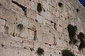 Jerusalem IMG 6756 (6190093909).jpg