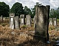 Jewish cemetery Lodz IMGP6644.jpg