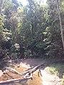 Juara - State of Mato Grosso, Brazil - panoramio - LUIS BELO (7).jpg
