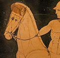 Kastor Niobid horse head.jpg