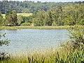 Katzensee - Strandbad 2014-06-09 15-16-37 (P7800).JPG