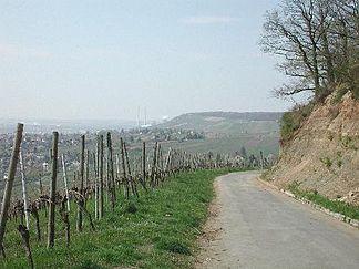 Keuperweg bei Heilbronn − ein geologischer Lehrpfad