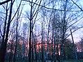 Khimselyshche, Cherkasy, Cherkas'ka oblast, Ukraine - panoramio (225).jpg