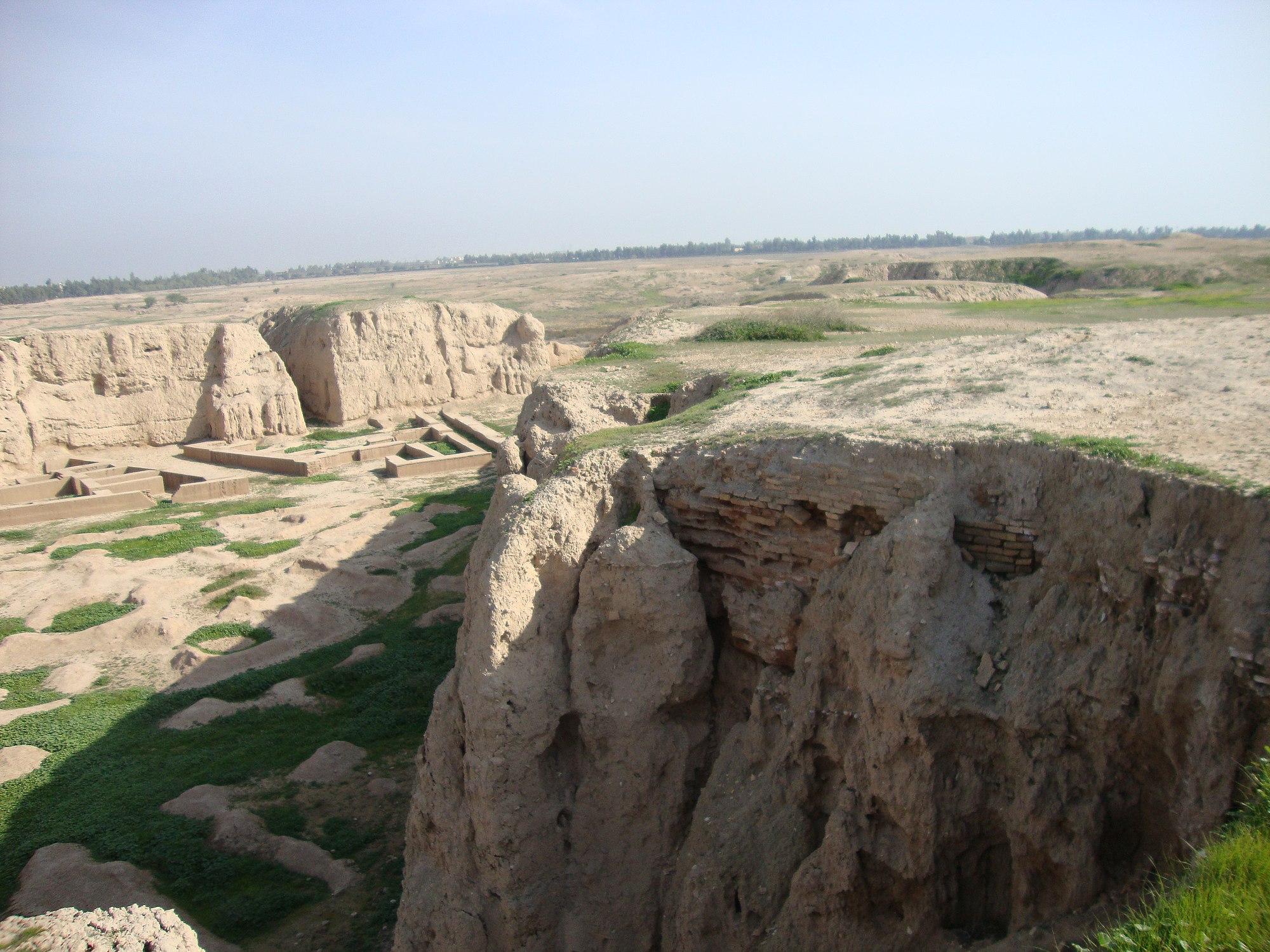 شوش (شهر باستانی)