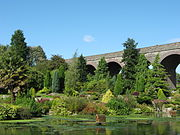 View of a garden containing a number of evergreen trees and a palm tree, with a lake in the foreground and the arches of a disused railway viaduct in the background.