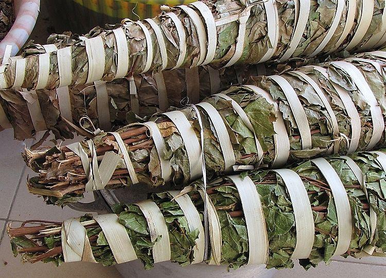 Feuilles de kinkeliba (Combretum Micrathum)