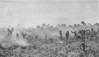 Operation Chronicle - Clearing on Kiriwina for an airfield