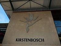 Kirstenbosch National Botanical Garden by ArmAg (1).jpg