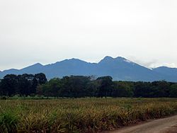 Kitanglad range central part.JPG