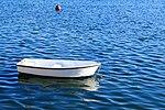 Kleines Boot (32350762566).jpg