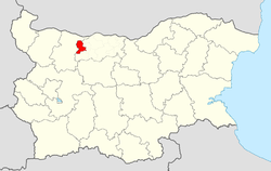 Knezha Municipality within Bulgaria and Pleven Province.