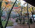 Komyozenji Temple November 2012 05.jpg