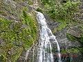 Kuranda QLD 4881, Australia - panoramio (38).jpg
