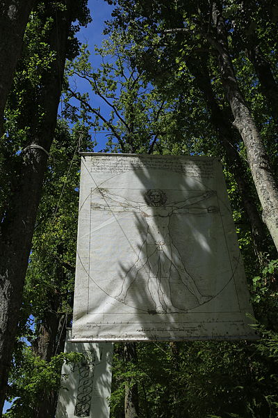 file l 39 homme de vitruve par l onard de vinci jpg wikimedia commons. Black Bedroom Furniture Sets. Home Design Ideas