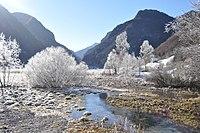 L'inverno del biotopo (1).jpg