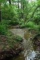 Lašovice, potok.jpg