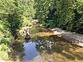 LaBarque Creek in Young CA.JPG