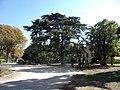 La Rosaraie - Jardin 2.jpg