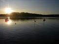 Lac des Settons.png