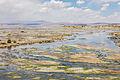 Laguna Salada, Bolivia, 2016-02-02, DD 111.JPG