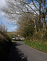 Lane into Halwell - geograph.org.uk - 1242350.jpg