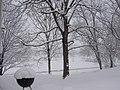 Late March Snow Storm - panoramio.jpg