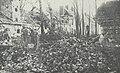 Le château d'Hailles en mai 1918 bpt6k6234134w 108.jpg
