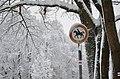 Lebenswertes chemnitz chemnitz winter stadtpark reitverbot schnee.jpg
