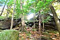 Ledges at Cuyahoga Valley National Park (10544237386).jpg