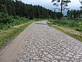 Lentvario sen., Lithuania - panoramio (31).jpg