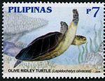Lepidochelys olivacea 2006 stamp of the Philippines.jpg