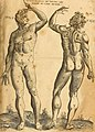 Les oewres de chirurgie de Iacques Guillemeau, chirurgien ordinaire du Roy et Iure a Paris - avec les portraits et figures de toutes les parties du corps humain et des instrumens necessaires au (14751089004).jpg