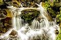 Let the life flow like stream.jpg