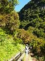 Levada 25 Fontes, Madeira, Portugal, June-July 2011 - panoramio (55).jpg