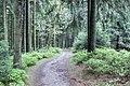 Liebesbankweg - panoramio (5).jpg