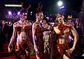 Life Ball 2014 red carpet 100.jpg