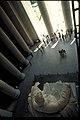Lincoln Memorial, Washington D.C. (7fc9b709-f3b5-42fa-aaeb-183439e93c56).jpg