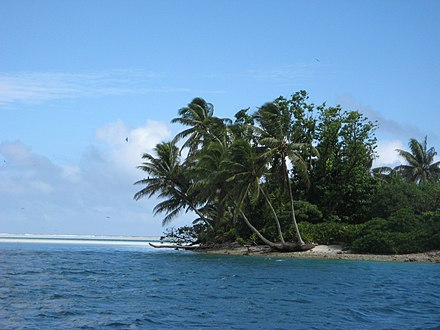 A tropical islet with palm fronds oriented in the direction of the prevailing winds. Line5304 - Flickr - NOAA Photo Library.jpg